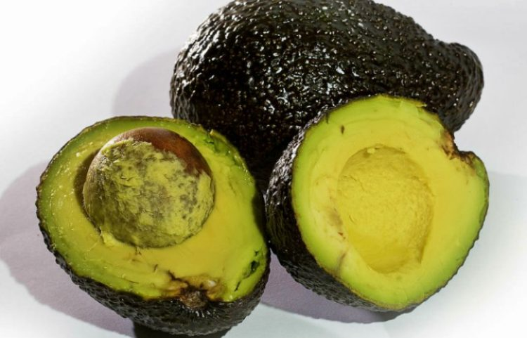 Don't put avocado pits down garbage disposal