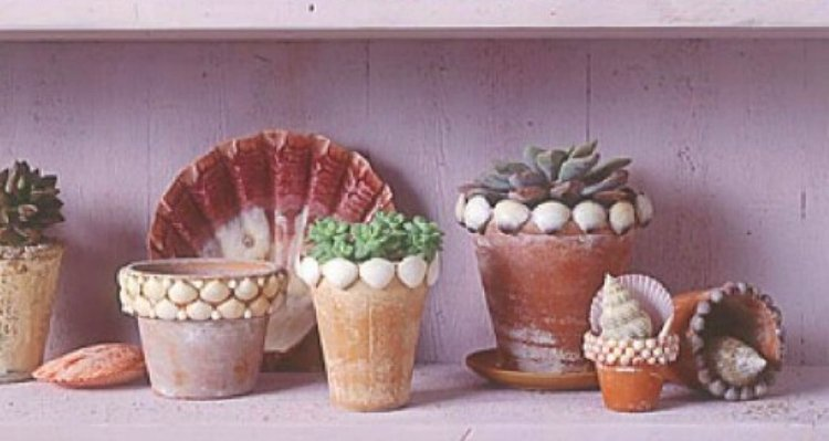 Seashells glued to weathered terra cotta flower pot
