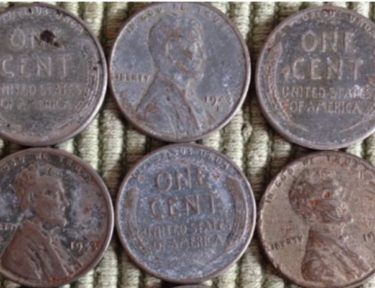 rare pennies on display