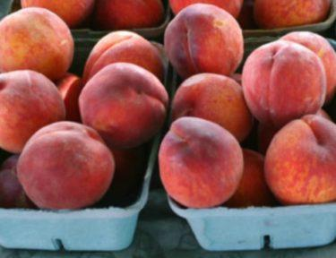 peaches in green cartons