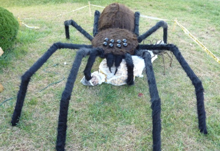 DIY giant spider.